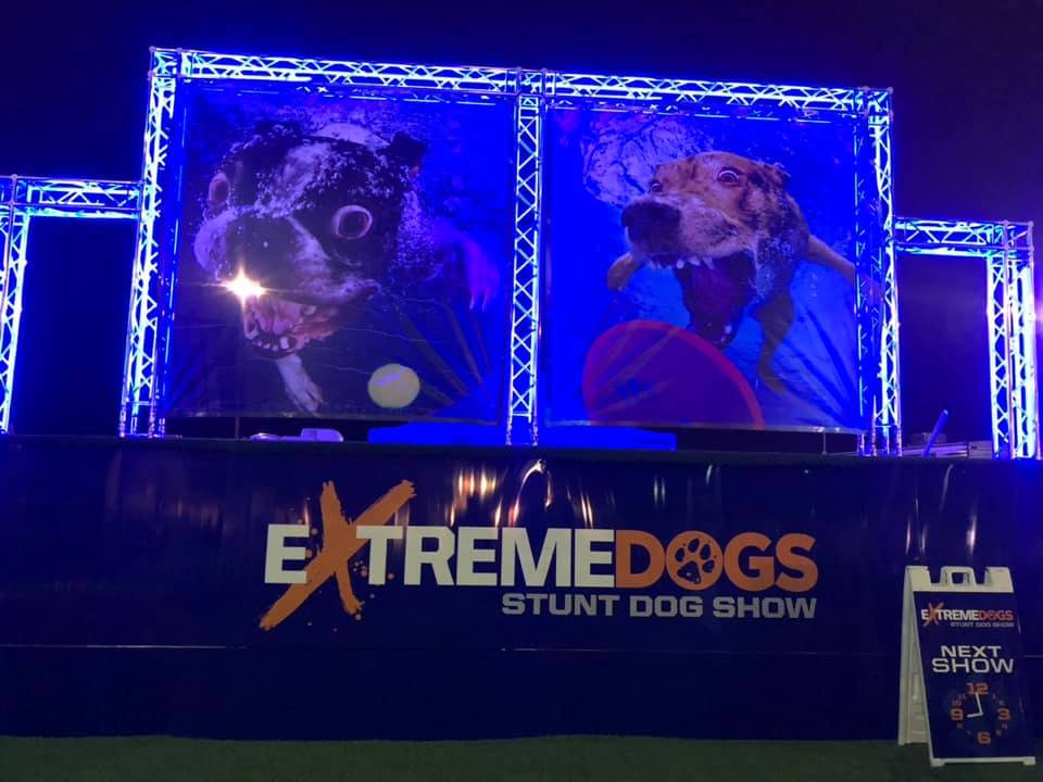 Extreme Dogs Trick Dog Show presented by FUSION Talent Group and Andrew Pogson aka Freddy Fusion