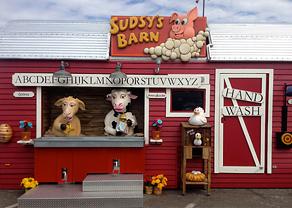Sudsy's Barn