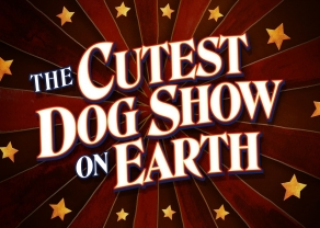 The Cutest Dog Show on Earth